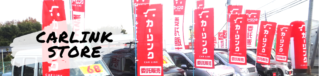 CARLINK STORE